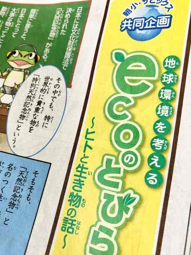 朝日小学生新聞とSAPIX
