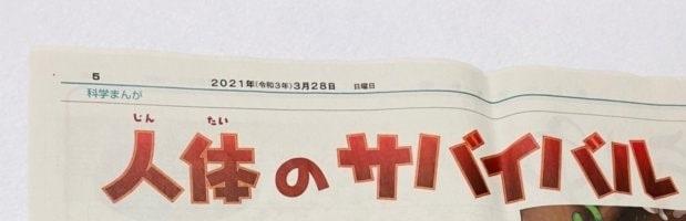 朝日小学生新聞の使い方3