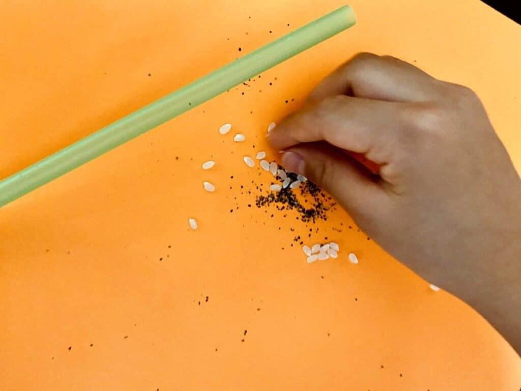 グルービーラボの実験お米追加